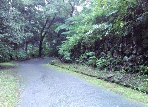 早朝ランニングで仙台城跡