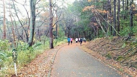 仙台のランニングコース~台原森林公園編~
