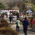 台原森林公園の3時間耐久ランってこんなイベント!